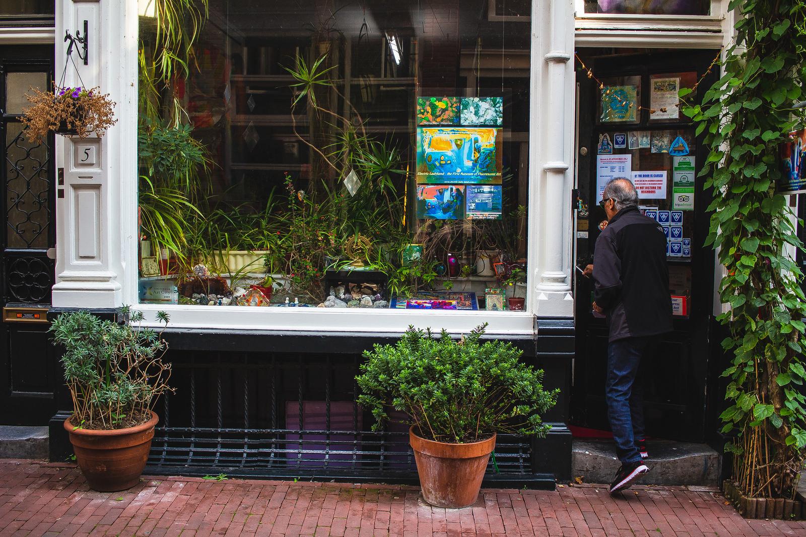 Babí léto v Amsterdamu